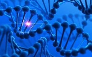 Восстановление фертильности при синдроме резистентных яичников