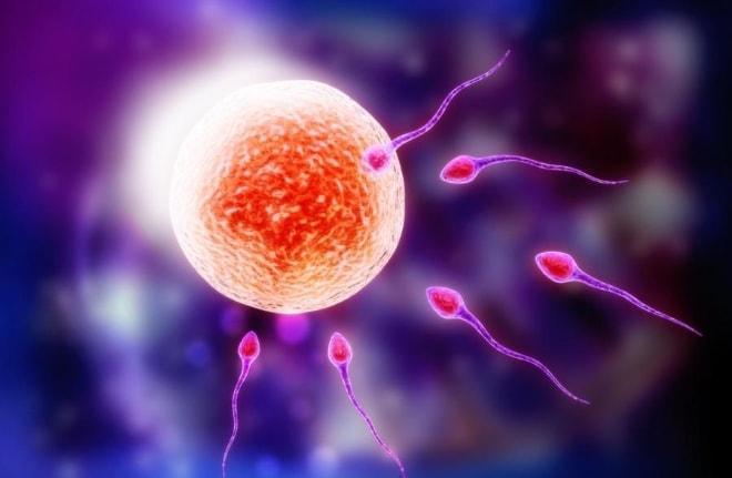 Как стимулировать яичники при поликистозе