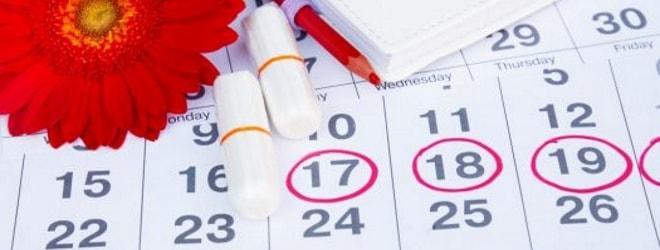 Проведение УЗИ после окончания менструации