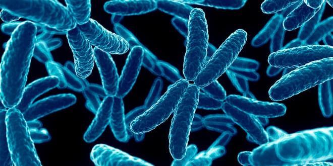 Хромосомные нарушения у женщины