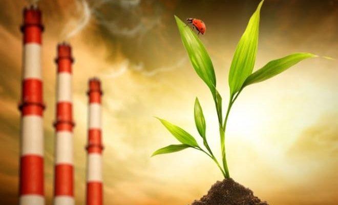Появление онкологии из-за плохой экологии