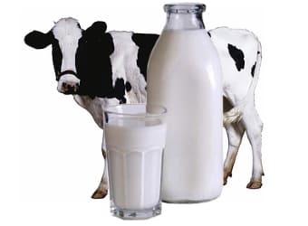 Молоко может вызвать гиперфункцию яичников